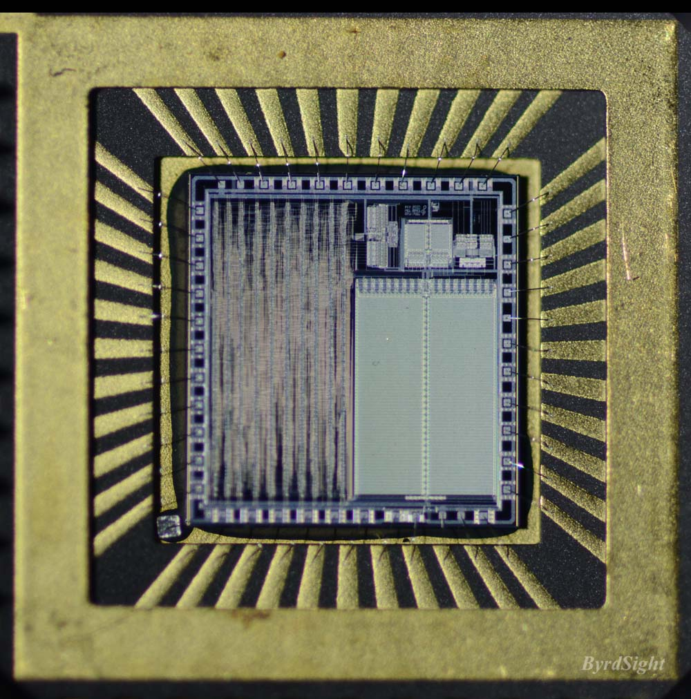 Photograph of chip in package of Apple Sound Chip